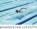游泳 爬行 运动 11415274