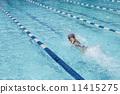 游泳 爬行 运动 11415275