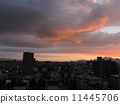 Dusk of the city 11445706