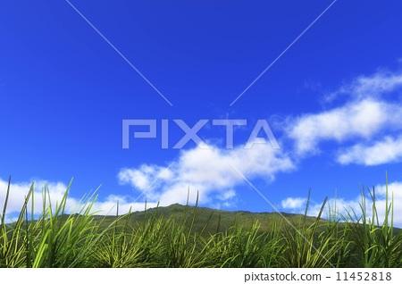 高原的雲彩 11452818