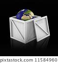 球体 世界 地理 11584960