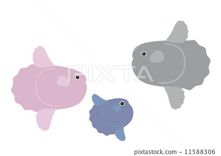 Fresh fruit fish 11588306