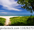 Perfect summer tropical beach with a footpath in the grass on th 11626273
