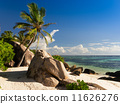 Tropical beach with coconut palm at Seychelles 11626276