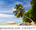 Tropical beach with coconut palm trees at Seychelles Islands 11626277