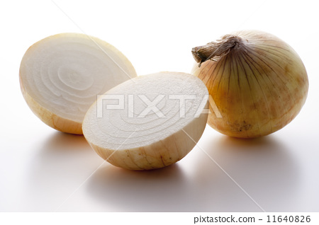 Onion 11640826