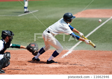 baseball 11662946
