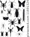 spider, fly, black 11691324