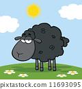 Cute Black Sheep On A Meadow 11693095