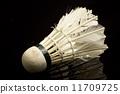 play,badminton,shuttlecock 11709725