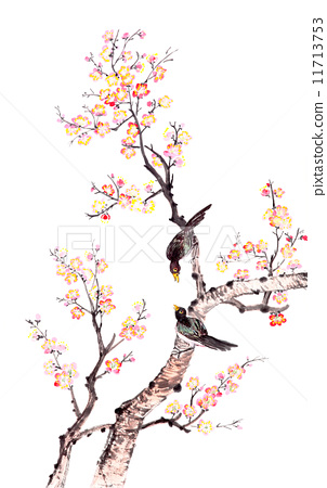 Traditional Chinese painting of plum blossom 11713753