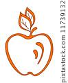 plant, organic, orange 11739132