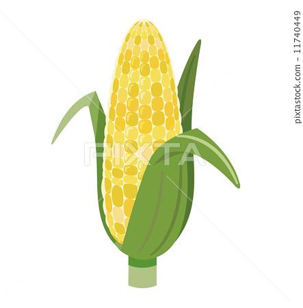 Corn [Foodstuff series] 11740449