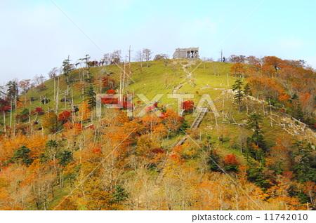 가을 日出ヶ岳 11742010