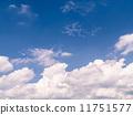 ท้องฟ้าสีฟ้าในฤดูร้อน 11751577
