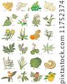 herbal, medicine, herb 11752374