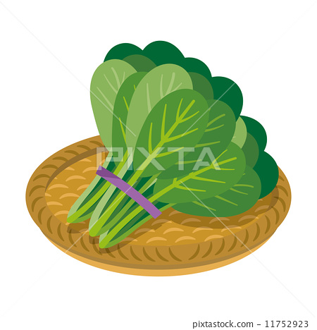 Komatsuna [Foodstuff series] 11752923