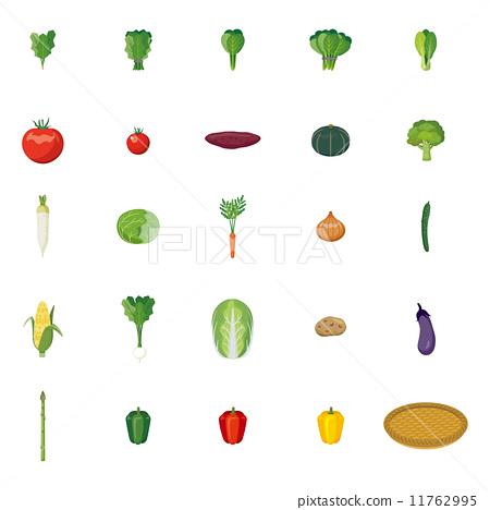 矢量 蔬菜 一套 11762995