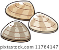 baby-neck clam, vectors, vector 11764147