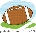 American Football Ball On Field  11805774