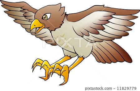 Hawk 02 11829779