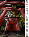fushimi inari-taisha, senbon-torii gates, Torii Gate 11864859