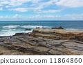 senjojiki, coast, seashore 11864860