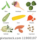 set of 9 vegetables  11900107