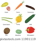 vegetables on a white background  11901119