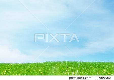 草原 11909568