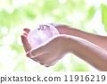 양 손, 두 손, 에코 이미지 11916219