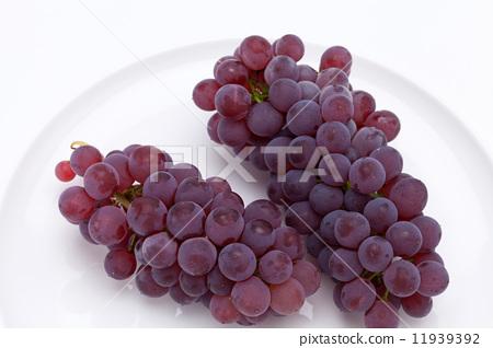 Autumn grapes 11939392