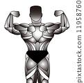 muscle, men, males 11958760