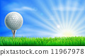 Golf course ball and tee 11967978