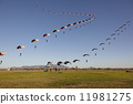 Compilation of Skydivers approaching for landing 11981275