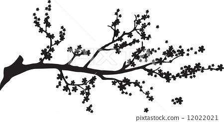 Oriental cherry branch 12022021