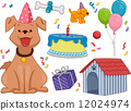 Birthday Dog 12024974