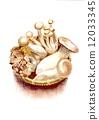 蘑菇 12033345