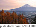 ภูเขา,ฟูจิ,โยชิดะ 12034100