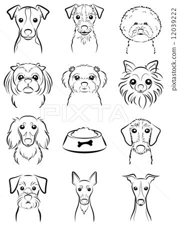 Dog / line drawing 12039222