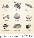 herb, garlic, spice 12073451