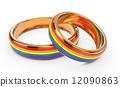 女同性戀者 同性戀者 結婚 12090863