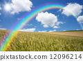 麦畑と雲と太陽と虹 12096214