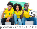 Excited football fans in yellow sitting on couch with brazil fla 12182310