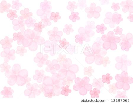樱花春天春天4月植物桃花瓣可爱盛开白背吉野樱花图案日本花纹纹理水彩花卉图案 12197063