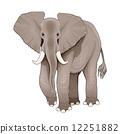 animal, elephant, africa 12251882