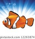 sea fish 12263874