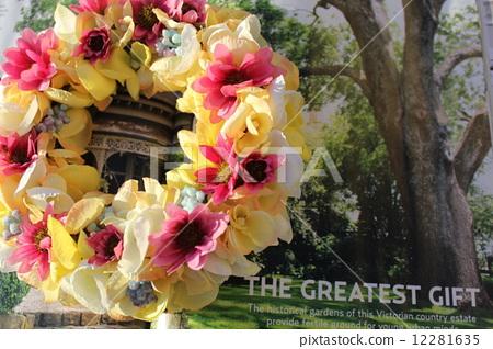 Flower lease 12281635