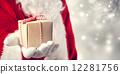 来自圣诞老人的礼物 12281756