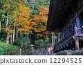 교토 윈 - LIN 원 정원의 단풍 풍경 12294525